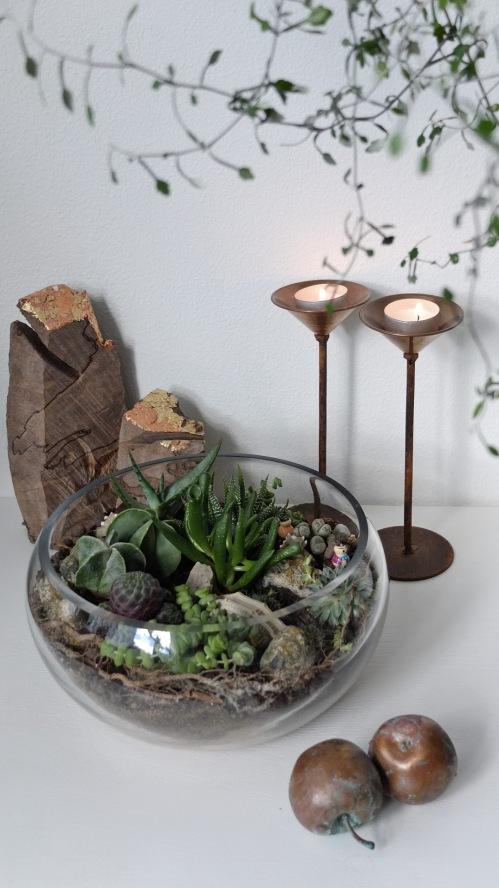 Blomsterterrarium 1 009